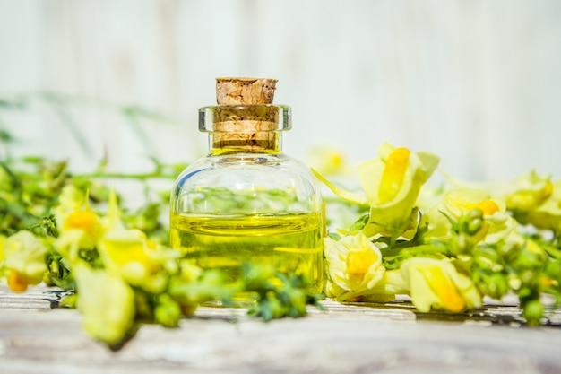 Alsem extract. medicinale planten. selectieve aandacht. natuur.