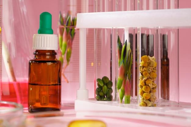 Alternatieve geneeskunde concept. natuurlijke kruiden homeopathische geneeskunde