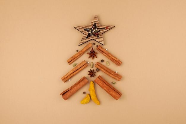 Alternatieve kerstboom. set van pittige kruiden voor het maken van indiase masala-thee.