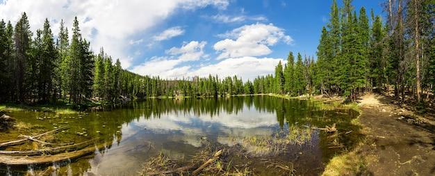 Altijdgroene bossen rond het panorama van het meer van estes park