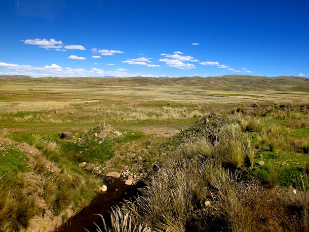 Altiplano in de andes, peru, zuid-amerika