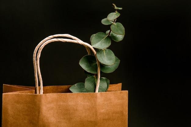 Ambachtelijke bruine papieren boodschappentas planten binnen zwarte achtergrond