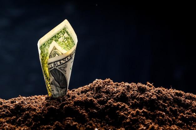 Amerikaanse dollars groeien uit de grond
