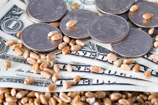 Amerikaanse kwart dollar munten close-up, oude 25 ons cent munten met papiergeld en tarwekorrels in een veld op de bodem
