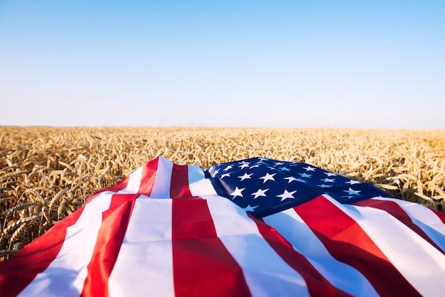 Amerikaanse vlag op het tarweveld die de sterke landbouw, economie en vrijheid van de verenigde staten van amerika vertegenwoordigt