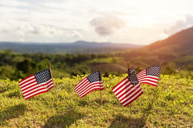 Amerikaanse vlaggen in het gras