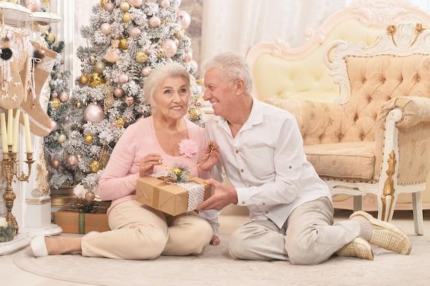 Amusant paar met kerstcadeau in de buurt van boom