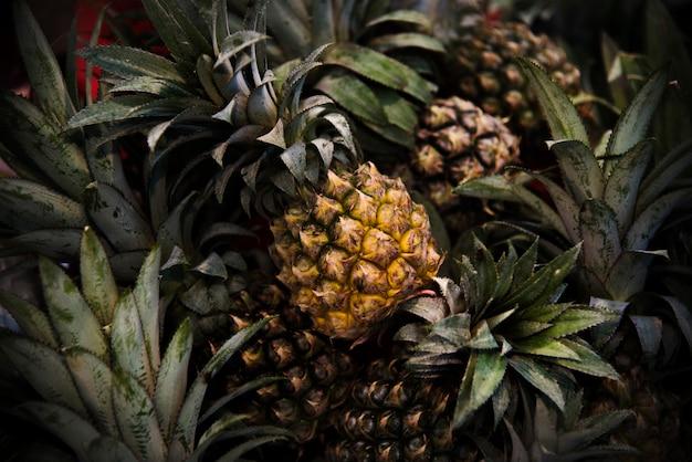 Ananas ananas citrusvruchten sappige voeding pina