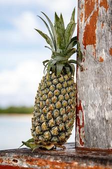 Ananas met blauwe hemel