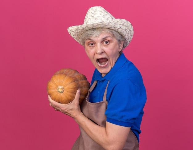 Angstige oudere vrouwelijke tuinman die een tuinhoed draagt, staat zijwaarts met pompoen geïsoleerd op een roze muur met kopieerruimte