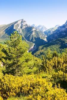 Anisclo canyon in de zomer