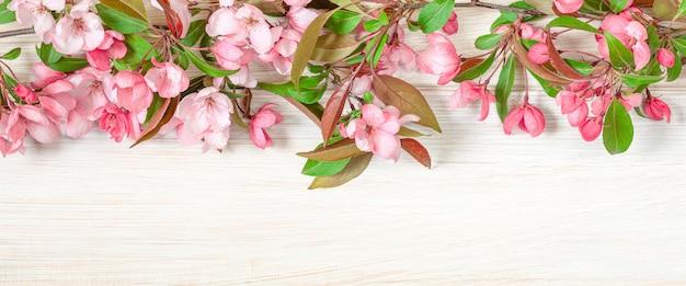 Appelboom op een licht houten tafel banner achtergrond