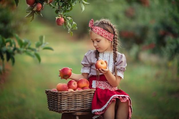 Appels oogsten op het platteland in de tuin. mooi meisje in vintage kleding een rode rok en een solokha zit in de buurt van rieten manden met appels en kijkt naar de vruchten