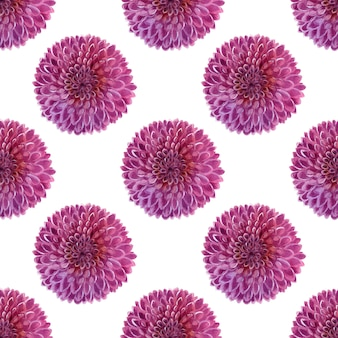 Aquarel achtergrond met roze dahlia's