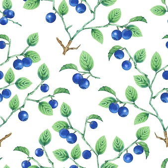 Aquarel bosbessen patroon. Premium Foto