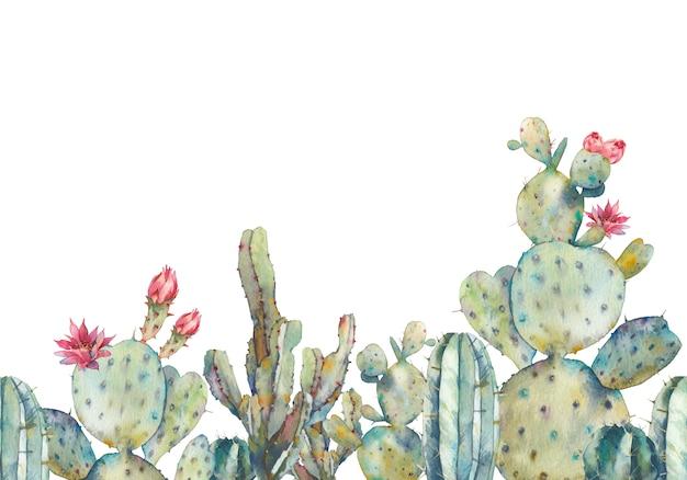 Aquarel cactus naadloze patroon. hand getrokken herhalend ornament met woestijnplanten op witte achtergrond. bloeiende cactussen banner ontwerp