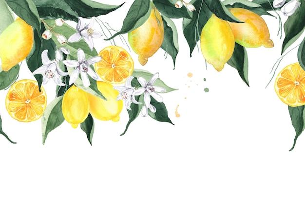 Aquarel citroen decoratieve rand geïsoleerd op wit