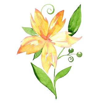 Aquarel gele bloem met groene bladeren geïsoleerd op een witte achtergrond