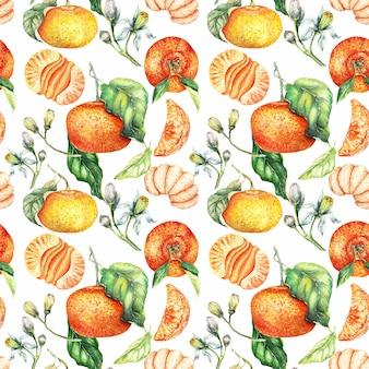 Aquarel geschilderd oranje clementine van naadloze patroon