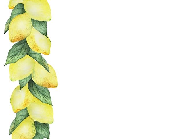 Aquarel grens met fel gele citroenen en bladeren op een witte achtergrond, helder zomerontwerp.