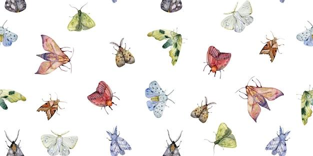 Aquarel hand getekende exotische vlinders en motten naadloze patroon geïsoleerd op een witte achtergrond