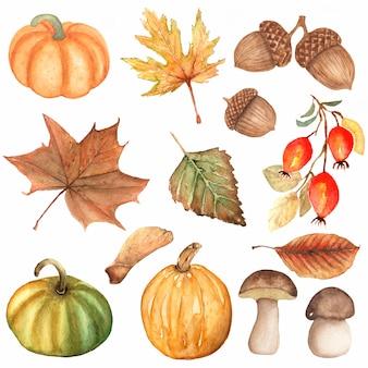 Aquarel hand getrokken set herfst elementen