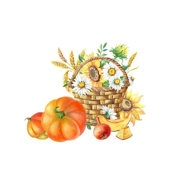 Aquarel herfst oogst. kaart voor thanksgiving met oranje pompoen, appel en bloemen in rieten mand. illustratie met zonnebloem, kamille op witte achtergrond. geïsoleerde hand getrokken schets.