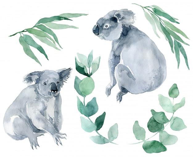 Aquarel illustratie van een koala met eucalyptustakken op een witte achtergrond. het symbool van australië is een schattige koala met een welp achter zijn rug. koala schets handgetekende.