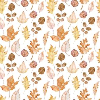Aquarel naadloos patroon van herfstbladeren geïsoleerd op de witte achtergrond. botanische kunst. val achtergrond. herbarium