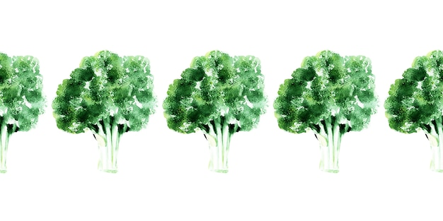 Aquarel naadloze grens met verschillende soorten kool. spruitjes, broccoli en boerenkool