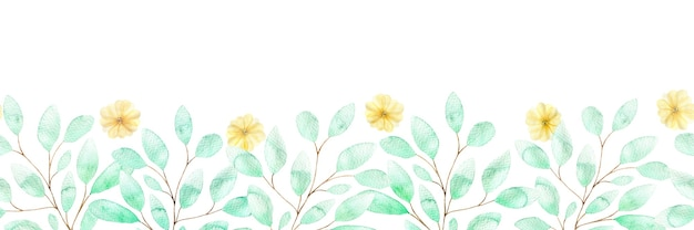 Aquarel naadloze grens met zachte gele bloemen en twijgen van groene bladeren, lentebloemen op wit
