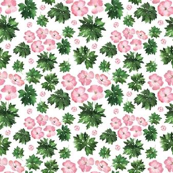 Aquarel naadloze patroon met bloeiwijzen, bloemen, knoppen en bladeren van de geraniumplant