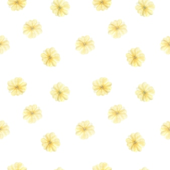 Aquarel naadloze patroon met zachte gele grote bloembladen, lentebloemen op wit