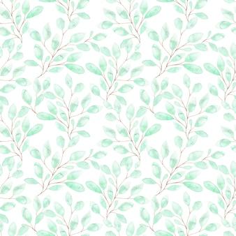 Aquarel naadloze patroon met zachte groene bladeren, lente gebladerte op twijgen op wit
