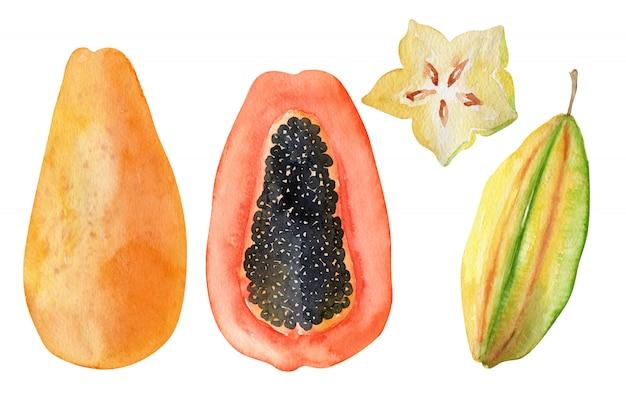 Aquarel objecten heldere exotische vruchten