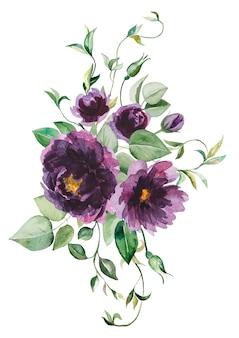 Aquarel paarse bloemen en groene bladeren boeket illustratie geïsoleerd