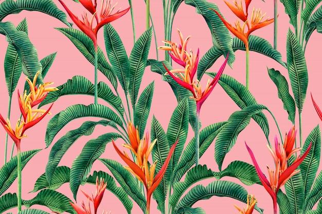 Aquarel paradijsvogel bloemen, kleurrijke naadloze patroon achtergrond