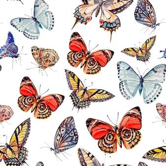 Aquarel patroon met prachtige vlinders. illustratie