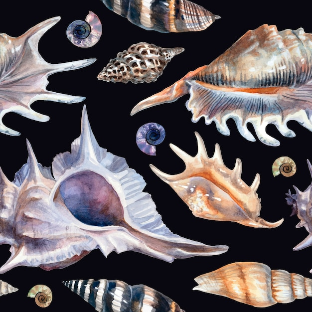 Aquarel patroon met schelpen op een zwarte achtergrond.