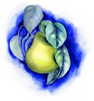 Aquarel peer vintage botanische illustratie op een blauwe achtergrond