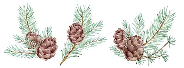 Aquarel pijnboomtakken en kegels, naalden op de witte achtergrond, decoratieve botanische illustratie voor ontwerp, kerstplanten. nieuwjaarskaarten