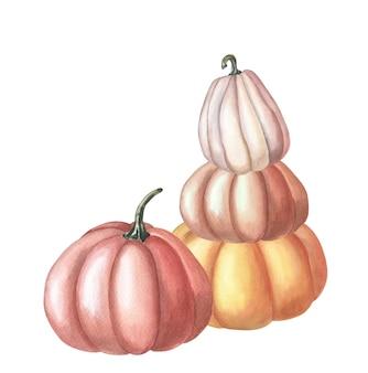 Aquarel rode pompoen. aquarel illustratie op witte achtergrond. groep groenten. herfst oogst. vers vegetarisch eten. thanksgiving vakantie. geïsoleerde hand getrokken schets.