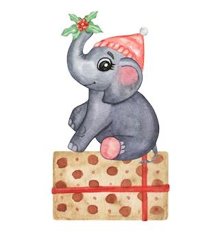 Aquarel schattige dieren illustratie - kleine olifant, hand getrokken set geïsoleerd, winer baby decor