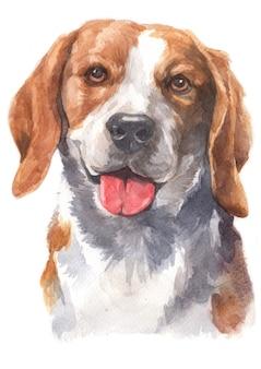 Aquarel schilderij van beagle hond