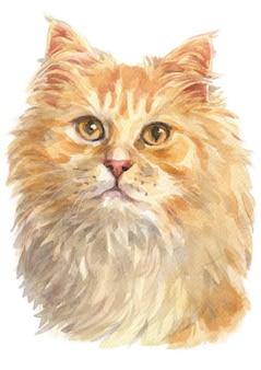 Aquarel schilderij van ginger langharig cat