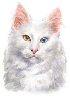 Aquarel schilderij van turkse angora kat