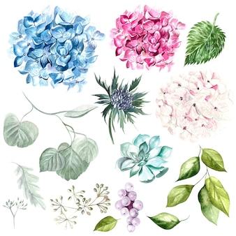 Aquarel set met bloemen