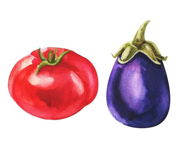 Aquarel set met geïsoleerde tomaat en aubergine