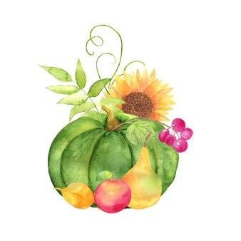 Aquarel van pompoenen