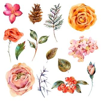 Aquarel vintage set van roos, hortensia, dennenappels, rode bessen en wilde bloemen